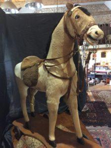 cheval de face